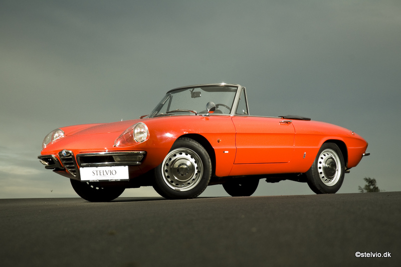 Cars For Sale Stelvio - 1979 alfa romeo spider for sale
